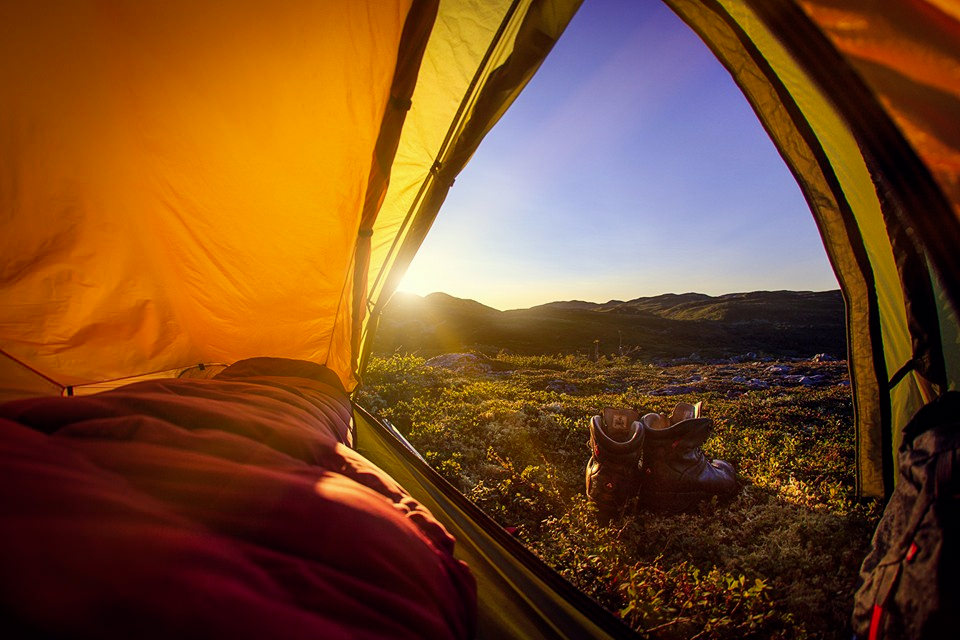 telt etter